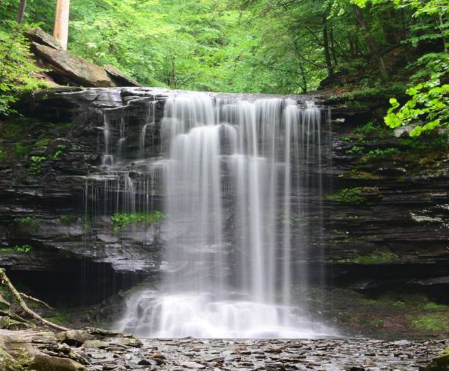 Harrison Wright Falls at Ricketts Glen State Park by Chris Fraley